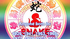 Chinese Zodiac 12 Animals Symbols