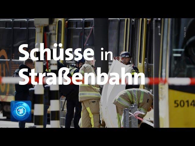 Drei Tote im niederländischen Utrecht - Polizei fahndet nach Täter