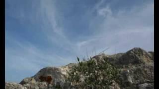 Isola dei Gabbiani Palau Sardegna