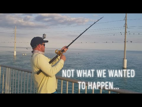 Bridge Fishing The Florida Keys: Part 1