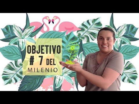OBJETIVO # 7 DEL MILENIO // By Dianita