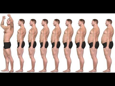 Diferencia entre perdida de peso y definicion muscular