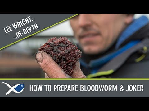 *** Coarse & Match Fishing TV *** How To Prepare Bloodworm & Joker