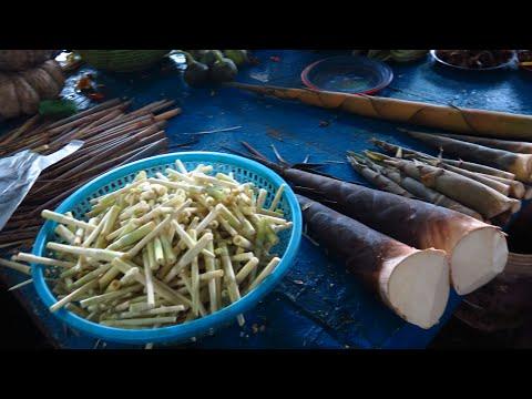 Laos market, fresh food market, wild food - Laos 2017