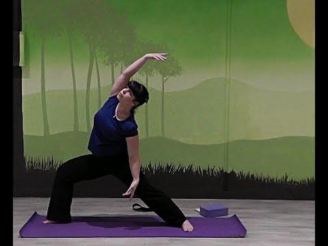 serpentine yoga class  moving meditation no planks or