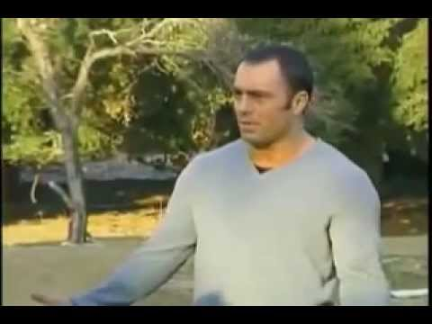JOE ROGAN FIGHTS ON THE FEAR FACTOR