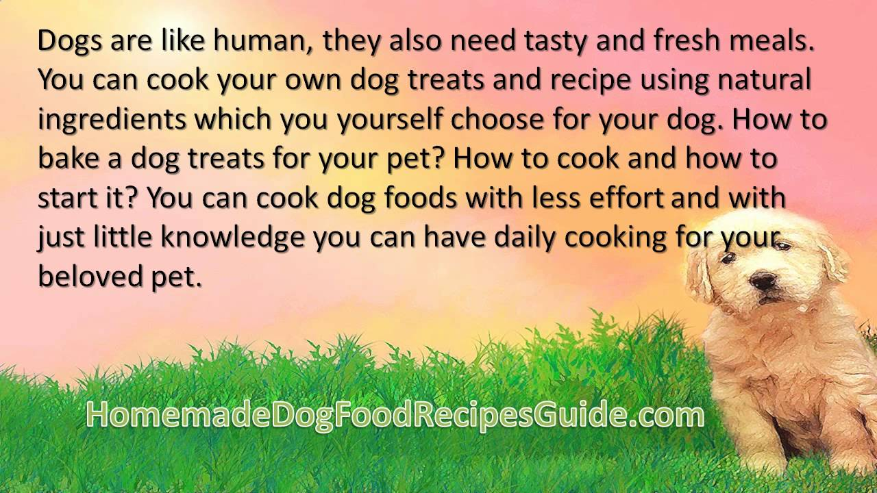 Dog food recipes chicken mince youtube dog food recipes chicken mince forumfinder Choice Image