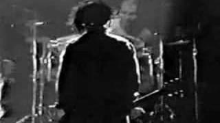 Ministry - No Bunny - NYC 1988 Thumbnail