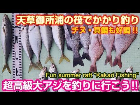 天草御所浦でかかり釣り~40cmの大アジ狙いチヌ・真鯛も好調 | Fun summer raft