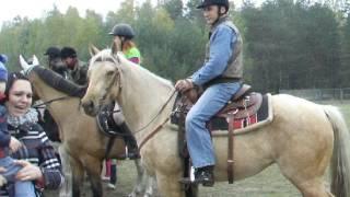 Hubertus 2015 w Dzbeninie - prezentacja koni