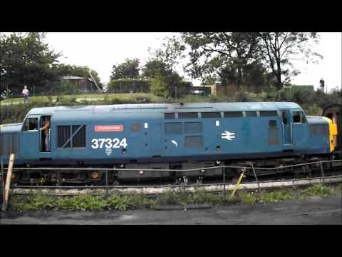 Watercress Line Diesel Gala Sept 2014