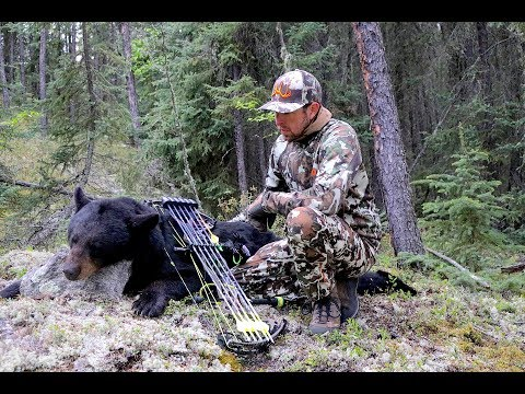 BOWHUNTING BLACK BEARS