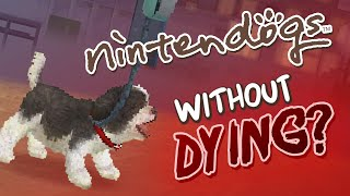 Can You Beat Nintendogs Without Dying?
