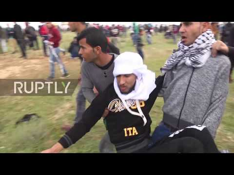 State of Palestine: Seven killed, hundreds wounded in protest close to Gaza-Israel border