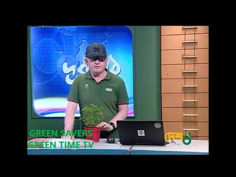 Gardening Course Episode 18: Re-potting your Plants