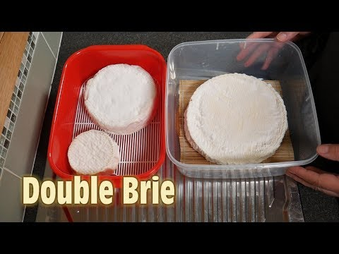 How to Make Double Brie Cheese at Home