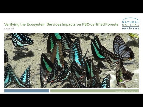 Verifying the Ecosystem Services Impacts on FSC-certified Forests