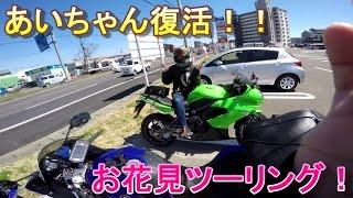 あいちゃん復活 花見ツーリング 01 モトブログ