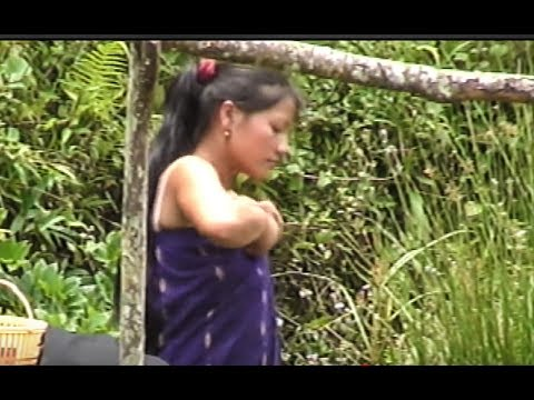 New movie hmong girl sexy 2017 from YouTube · Duration:  5 minutes 41 seconds