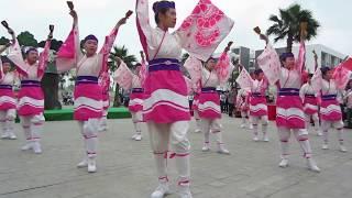 Yosakoi Yokaze (ソーラン, よさこい)  - Japanese traditional dance