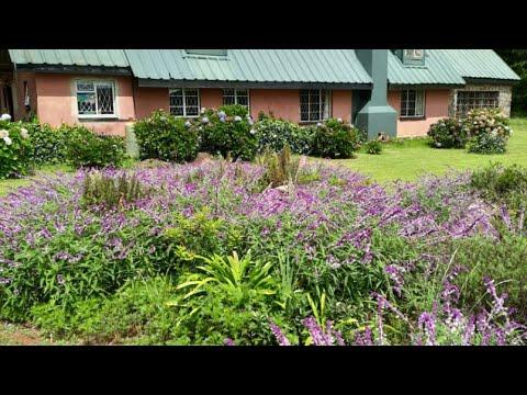 Manchester To Zimbabwe 2015, Travel Vlog