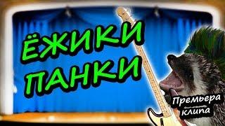 Артём Тугарин — Ёжики-Панки (Премьера Клипа)
