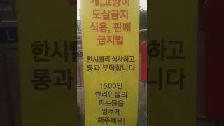 @6월12일 국회천막농성 주최자는 포이맘 (최경숙샘)이…