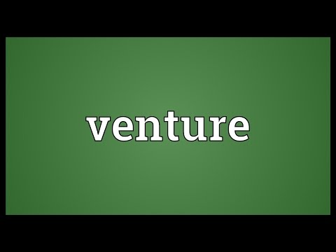 Venture Meaning