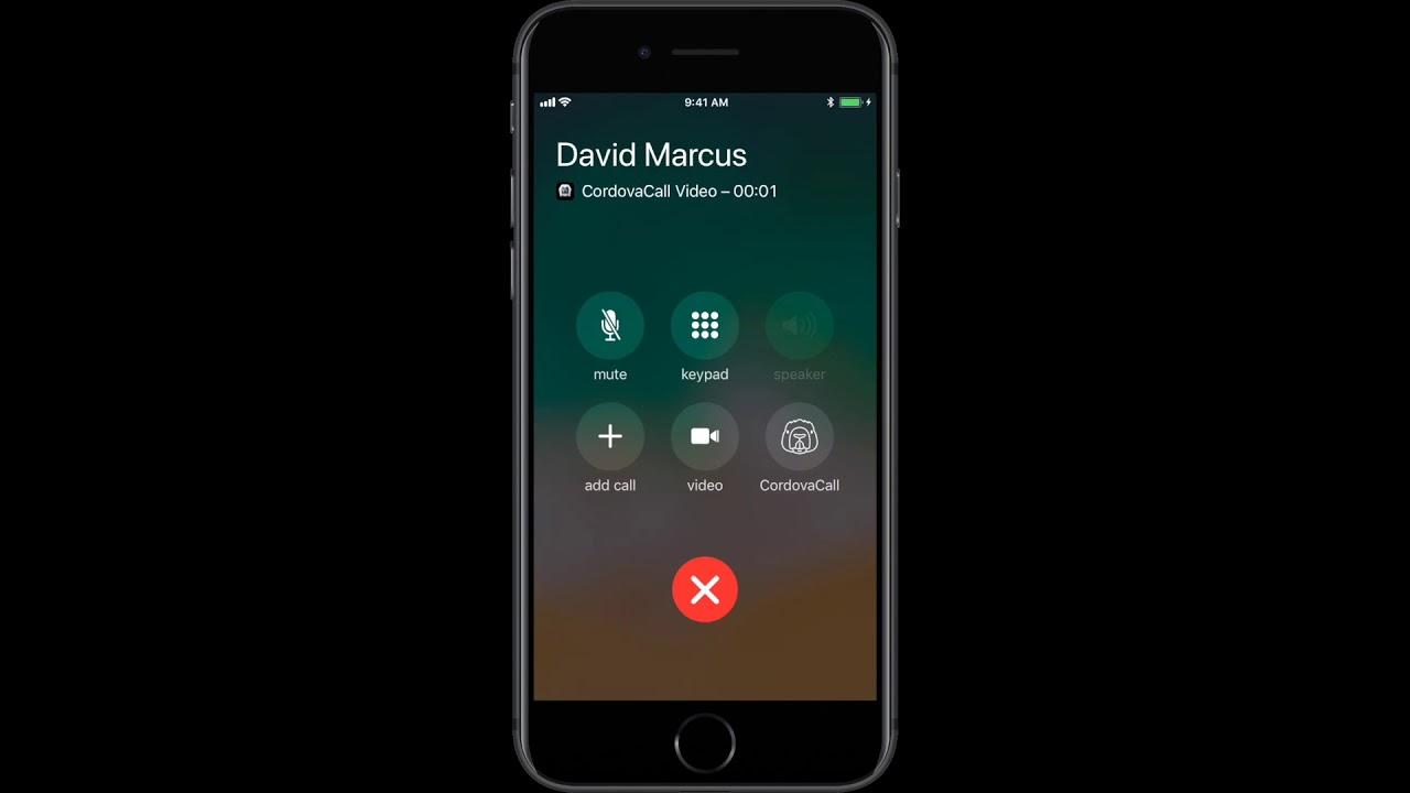 CallKit Demo (iOS)