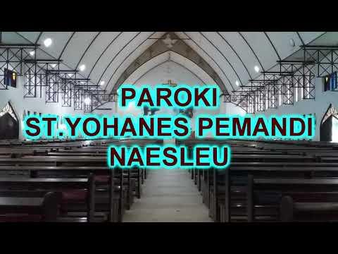 Jadwal Misa Streaming Paroki St.Yohanes Pemandi Naesleu