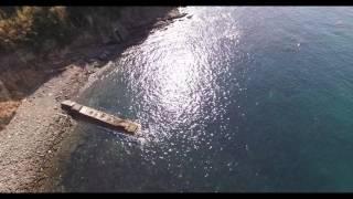 和歌山「加太瀬戸海峡」偶然映った魚群がすごい!