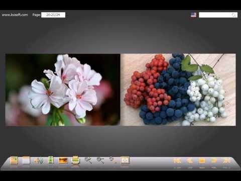 Программа для создания флэш фотоальбомов