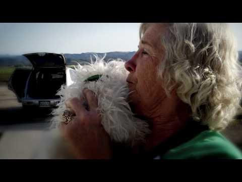 HSVMA Mobile Veterinary Clinic Program
