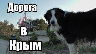 Дорога в Крым на машине. Как мы ехали в Крым на машине с собаками.