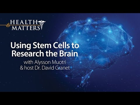 Using Stem Cells to Research the Brain - Health Matters thumbnail