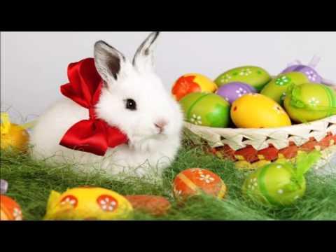 Fröhliche und schöne Osterfeiertage