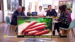 Les carottes : quels sont leurs réels bienfaits ?