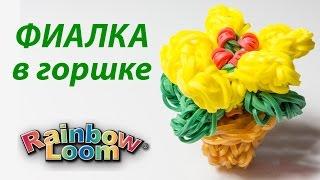 ФИАЛКА В ГОРШКЕ из резинок Rainbow Loom Bands. Урок 157