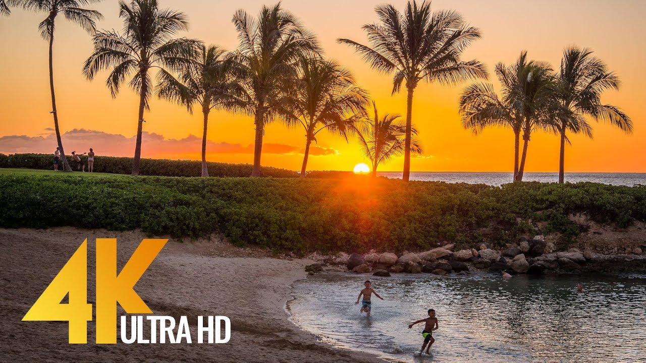 4K UHD Top Oahu Beaches - Hawaii Documentary Film - Part 2 - 1 Hour Video