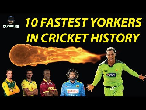 Top 10 Fastest Yorkers In Cricket History | Deadliest Yorkers | Toe Crushing Yorkers | Cricketude