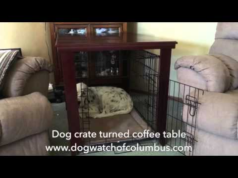 Dog crate turned coffee table