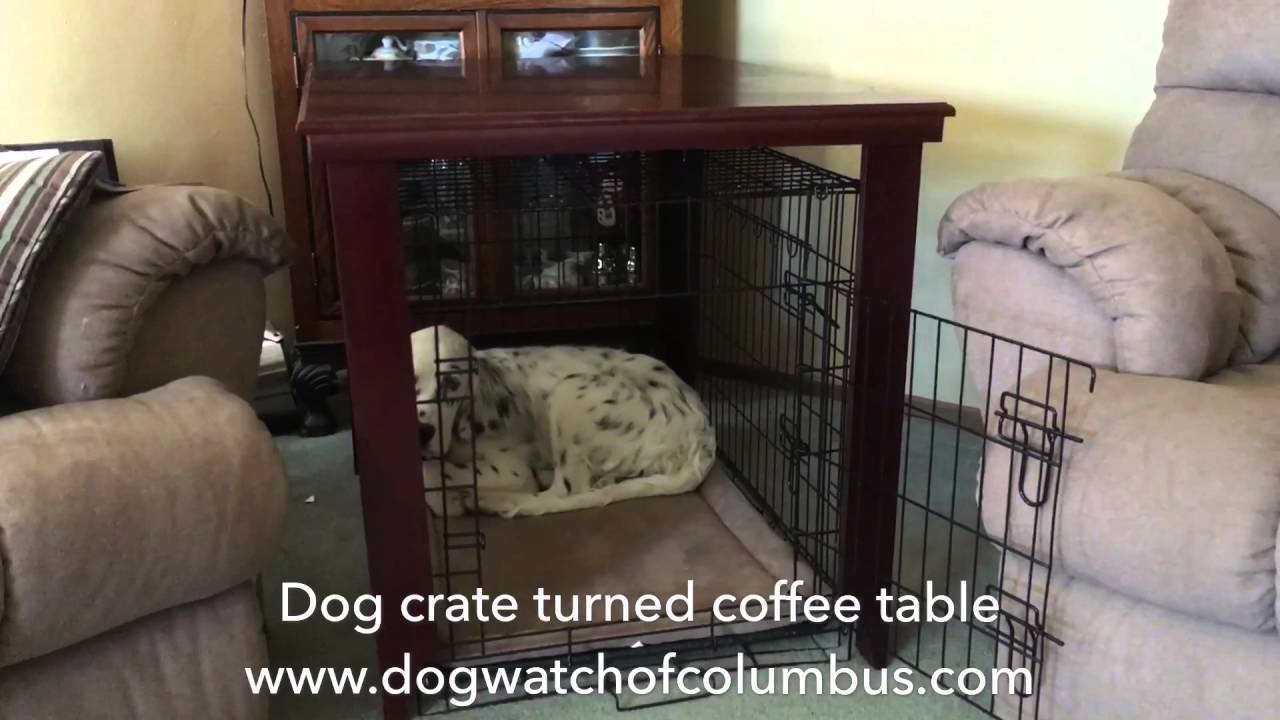 Dog crate turned coffee table - Dog Crate Turned Coffee Table - YouTube