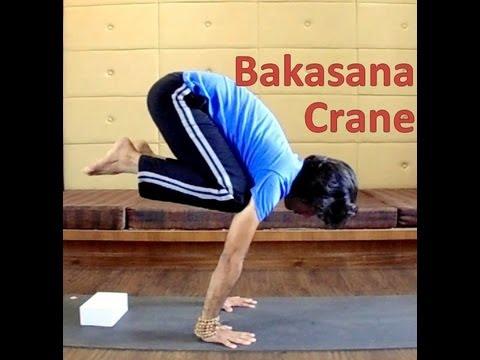 bakasana prep for beginners  crane arm balance pose  2