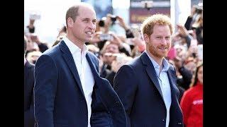 Британские принцы Уильям и Гарри снялись в новой части