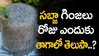 Sabja seeds health benefits | Sabja seeds benefits | Basil  seeds benefits in telugu | Basil seeds
