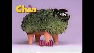 Chia Pet - the pottery that GROWS!