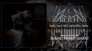 REBEL WIZARD - hair, wet soil, metallic taste (OFFICIAL AUDIO)