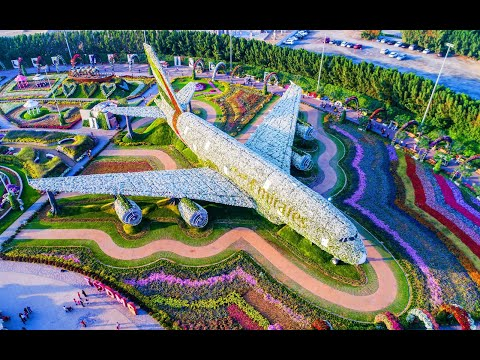 Dubai Miracle Garden 2020 (Day Tour) | United Arab Emirates DUBAI | Traveller Shekkhar – INDIA