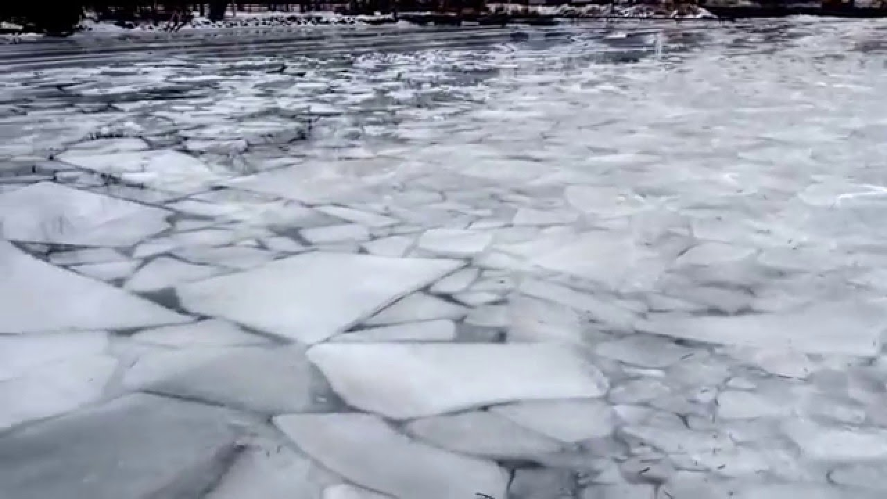 2016 ice fishing ice report january 9 2016 lake simcoe for Lake simcoe fishing report