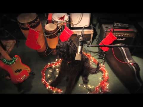 AMAZING SINGING CHRISTMAS DOG!